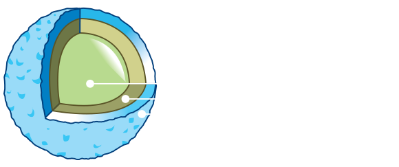 MSM Pet Food crocchetta-pro